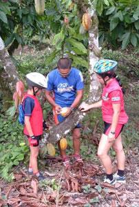 Коста-Рика – рай для экстремалов