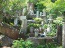 Храм на воде и город на вулкане – часть 3