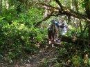 Изумрудная россыпь водопадов Гайаны – часть 3