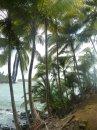 Карибская прелесть полуразрушенных казематов