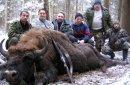 Иностранцы увозят на родину рога и черепа